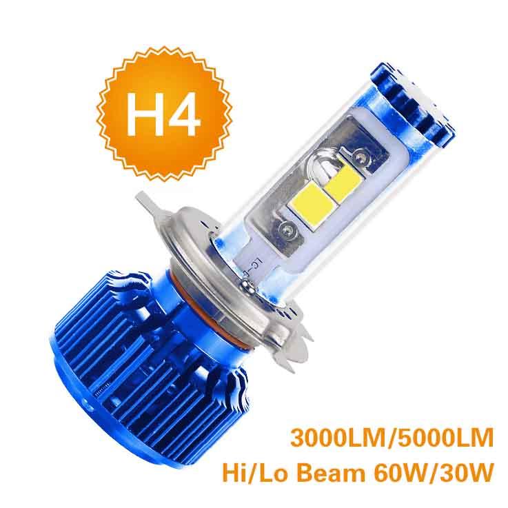 B2-H4